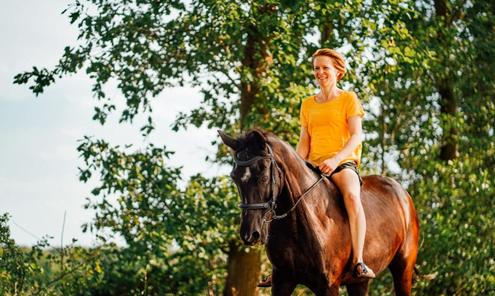 equine activity waivers